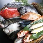 妊婦さんは魚を食べるときには注意が必要