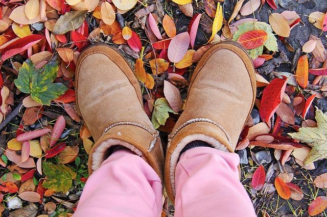 autumn-1534189_640
